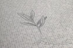 Постельное белье сатин «Форест»